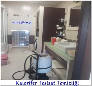 Cihazla Kalorifer Petek Tesisat Temizliği hizmeti