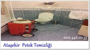 Ataşehir Petek Temizliği servisi