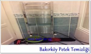 Bakırköy Petek Temizliği servisi