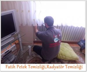 Fatih Petek Temizliği,Radyatör Temizliği servisi