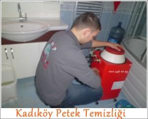 Kadıköy Petek Temizliği servisi
