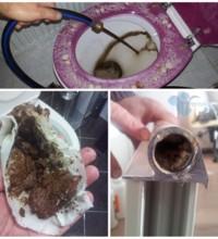 Isınmayan petekleri nasıl ısıtırım ?